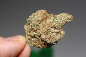 Weed met THC