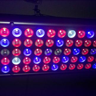 LED Groeilampen